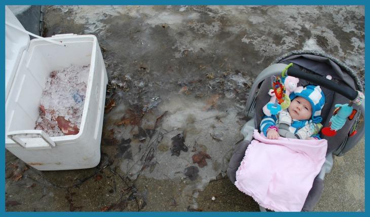 Ice Ice Baby2